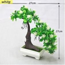 PNM Бонсай дерев.с бел.цвет.1230white...