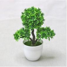 PNM Бонсай Кесонг зелен.1240green...